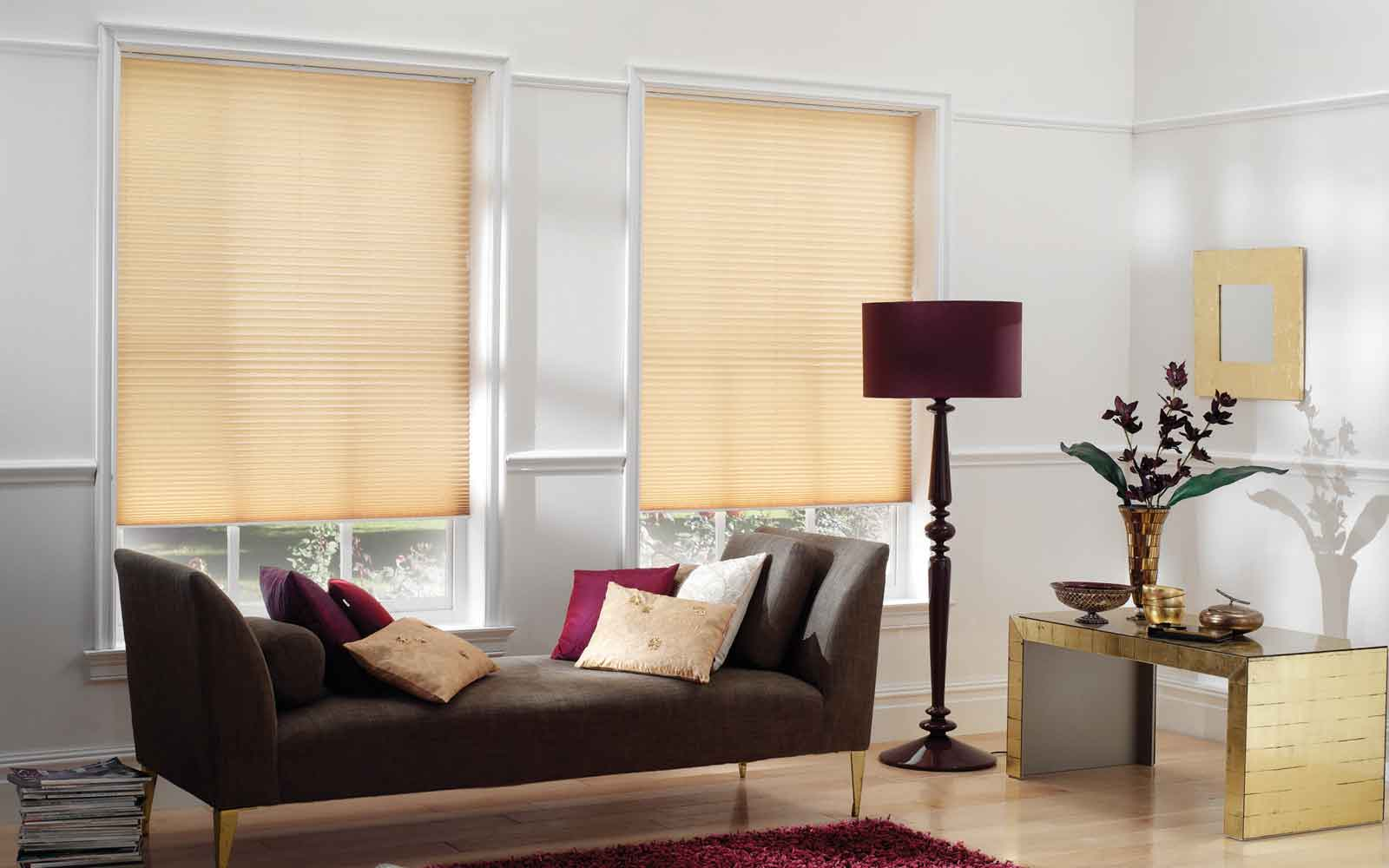 Pleated Blinds Living Room